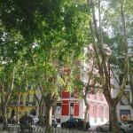 InterConnexia - Avenida da Liberdade lisboa